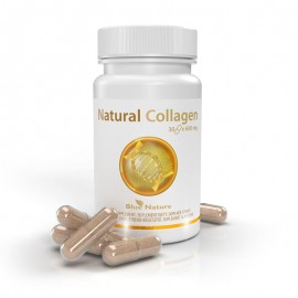 Natural Collagen: halkollagén + vadrózsa + szerves kén (MSM)